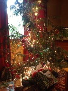 celebrated Christmas
